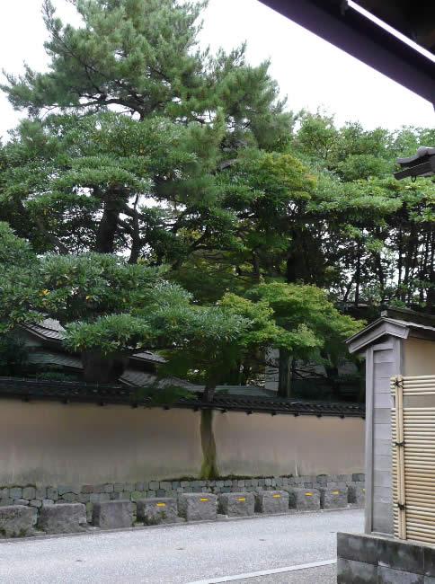 Kanazawa7