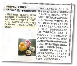神奈川新聞